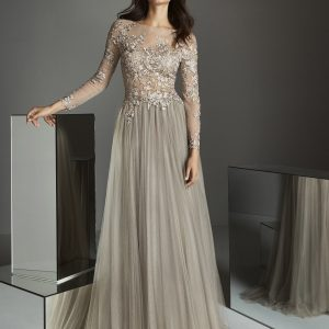Lace sleeve long dress.JPG