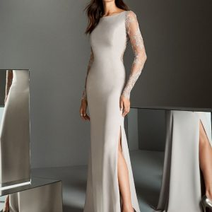 Lace sleeve long dress.JPG