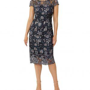 Cap sleeves and back v-neckline lace dress.JPG